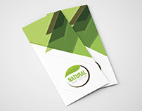 Natural Trifold Brochure