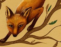 Fox & Feathers