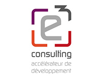 E3 Consulting | Identité visuelle
