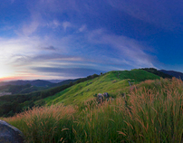 Broga Hill Landscape