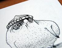 Nakkid Owls