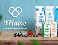 Kaslink: Maire logo visualization and visual breakdown