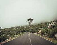 Table Mountain - A Hike