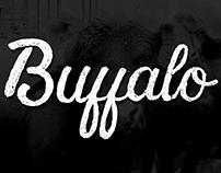 Buffalo - custom hand lettering & vector - personal