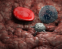 ProBlood System 2012 - 3D