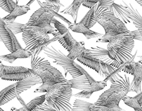 En Extinction - Patterns