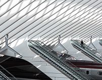 'Lines of Liège'