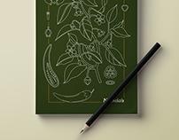 Nando's Notebook Illustrations