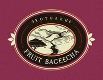 Fruit Bageecha's Branding identity