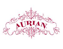 Aurian / Charte Graphique & Developpement.