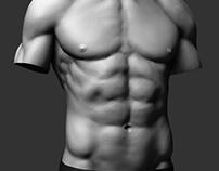 Strong Man Torso - Study #02