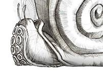 Mixed illustrations 2012