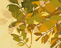 Leaves - Vector Illustration