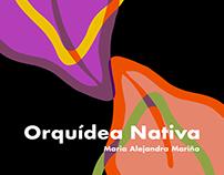Orquidea Nativa
