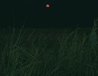 aliens or blood moon