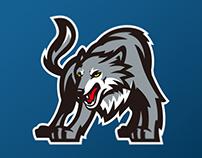 Minnesota Timberwolves logo concept