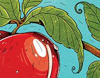 Red Apple / Editorial illustration