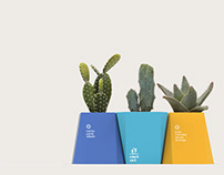 Colecti Cacti | Packaging for Cacti