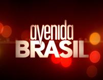 Avenida Brasil Infographic