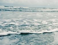 .sea.
