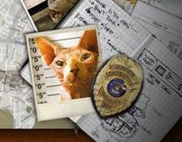 Feliny - Crime Scene Investigation
