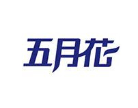 logotype typography