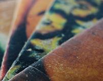 Caderno de Fruta