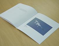 Catálogo Siria Vive. Exposición fotográfica