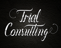 """Trial Consulting"""