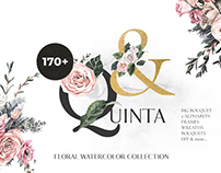 Quinta Rose Watercolor Collection By: Lana Elanor