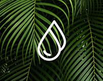 popotti - Branding & eCommerce Design