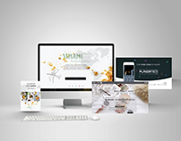Various Landing Pages