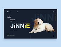 JiNNiE UI concept.