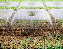 Agrodome | Modular micro environments