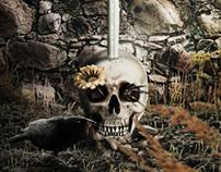 Dark Skull Project