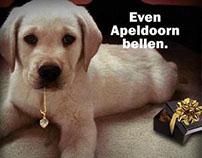 Even Apeldoorn bellen.