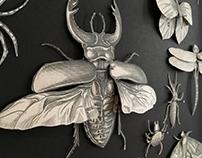 Insectarum