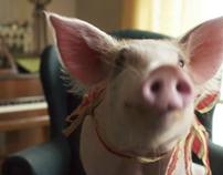 """Pig.com - """"House Pig"""""""