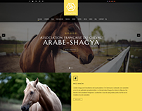 Ackwa Project - Design Shagya