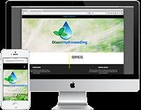 Branding and Web Development