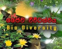 """Bio Diversity"" DVD Cover Design"