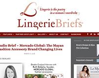 Lingerie Briefs Redesign