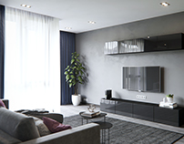 Gray living room+kitchen