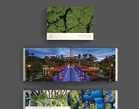 Exquisite Brochure Design