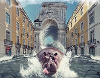 Hippo Lisbon
