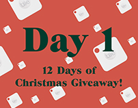 12 Days of Christmas Giveaway - 2017 Campaign