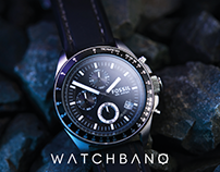 Logo and business card design for WatchBanQ