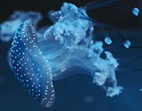 Ein Tag im Berliner Aquarium