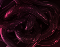 Python Lip Kit