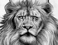 Jason's Lion